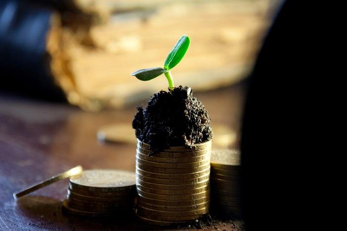 Cómo gastar el dinero de la capitalización del paro