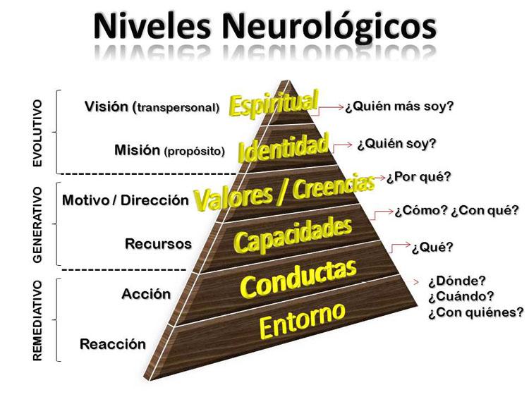 Piramide Niveles Neurologicos