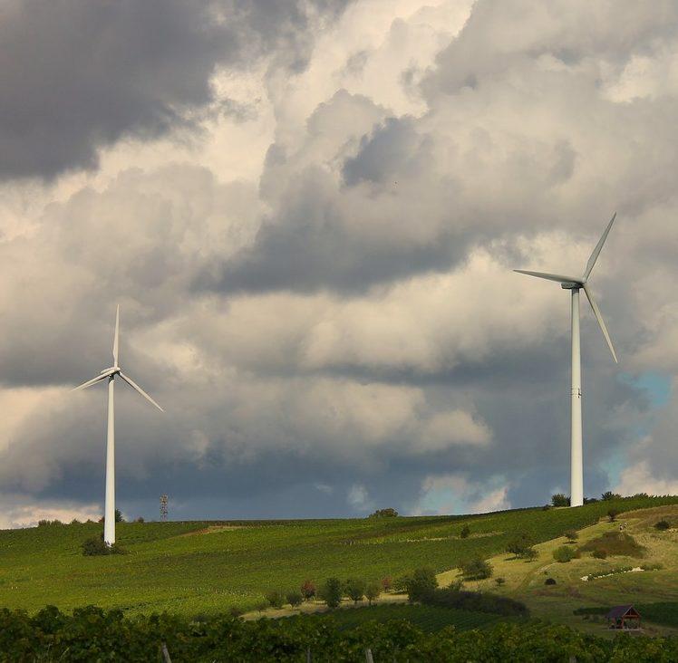 La banca ética favorece las energías renovables
