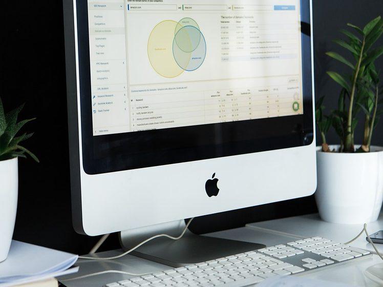 solicitar la vida laboral con certificado digital