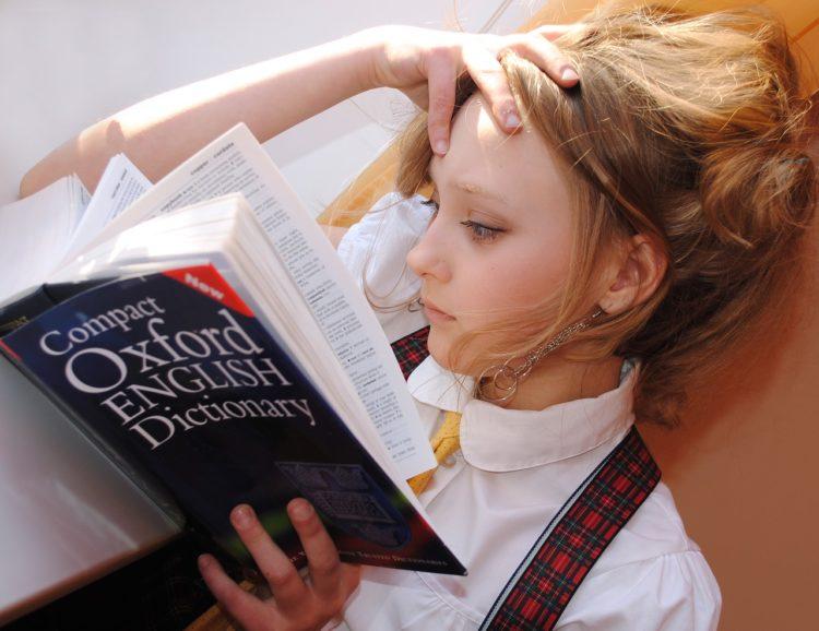 Estudia filología inglesa y trabaja como profesor o traductor