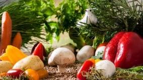 Cursos de tecnología de los alimentos: ¿Cuáles son los mejores?