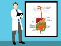 Requisitos y estudios necesarios para ser bacteriólogo
