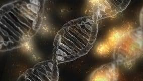 Bioinformática: ¿Qué es? ¿Para qué sirve? ¿Cómo y dónde se puede estudiar?