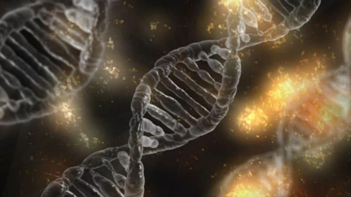 bioinformática qué es