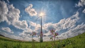 Máster en energías renovables de IMF Business School