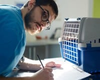 El sistema REIAC: Sistema de Identificación de Animales de Compañía